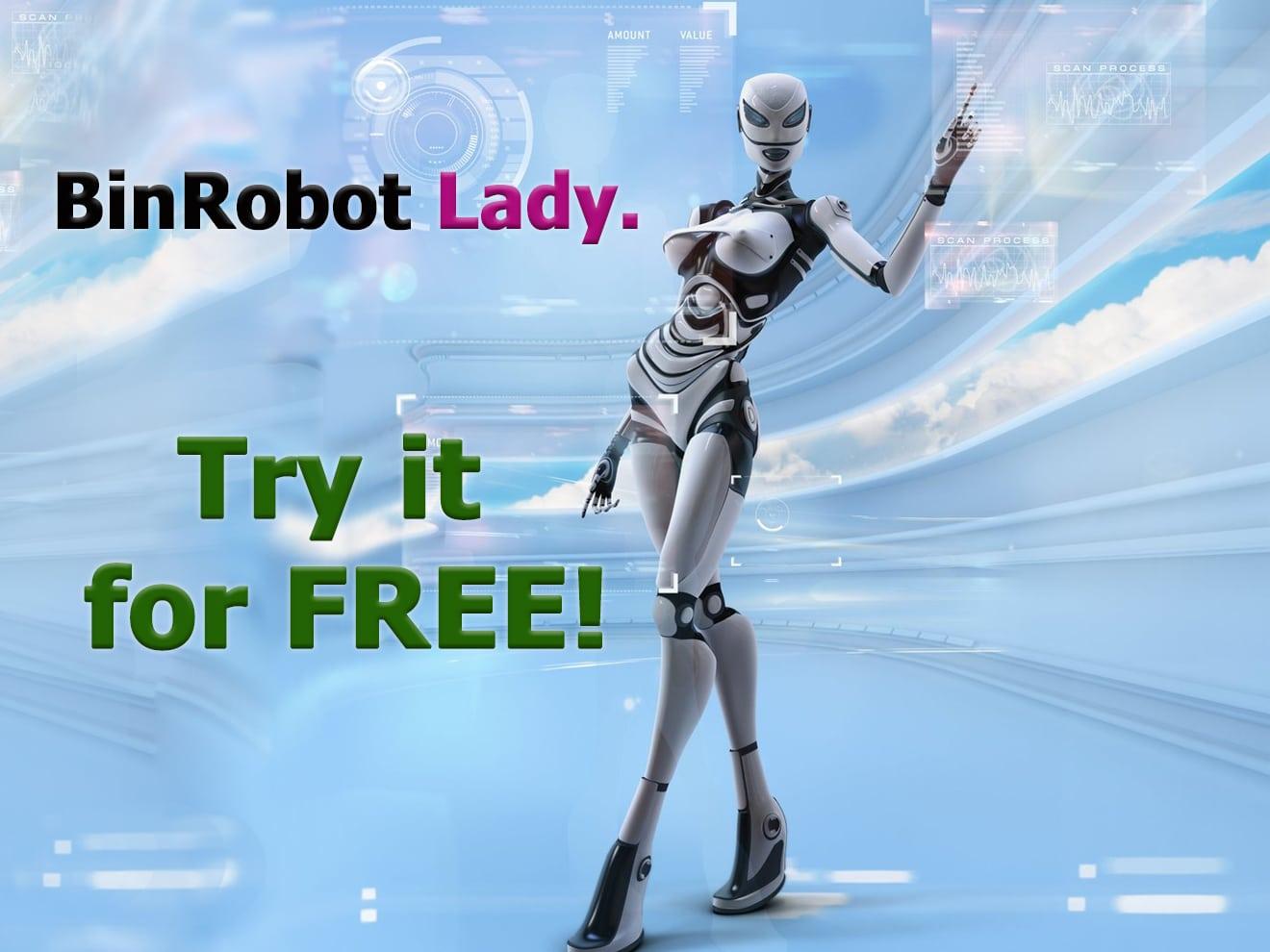 BinRobot Lady